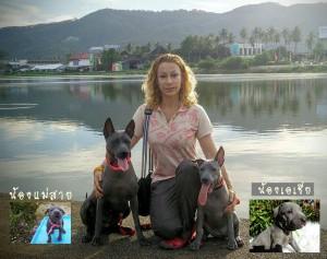 ขอบคุณชาวต่างชาติที่รับลูกสุนัขจากบ้านไทยหลังอานเชียงรายนะคะ