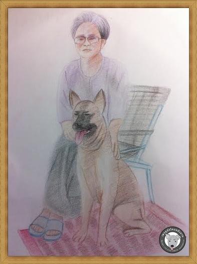 สุนัขไทยหลังอาน ขายสุนัขไทยหลังอาน   ลูกสุนัขไทยหลังอาน ครู  unnamed (3)www33