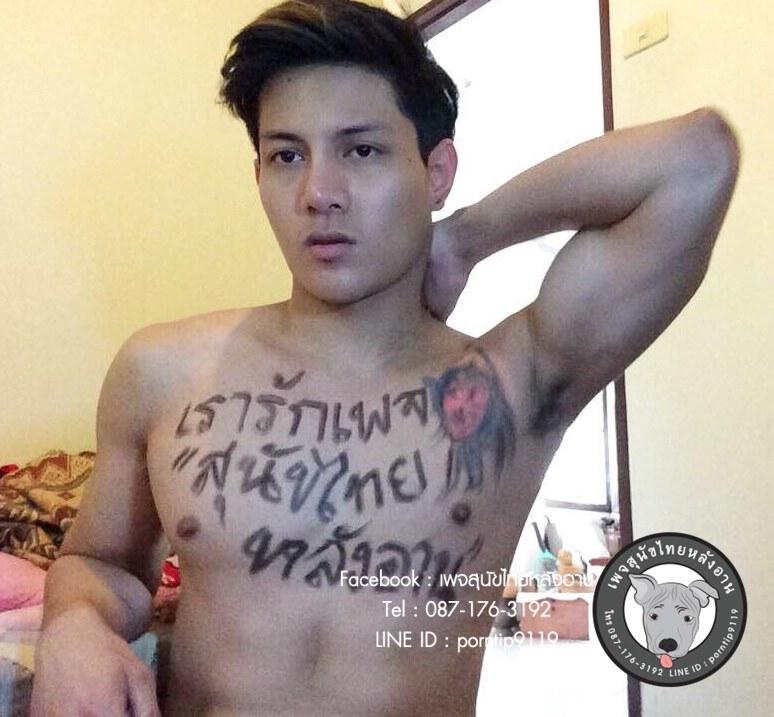สุนัขไทยหลังอาน ขายสุนัขไทยหลังอาน ลูกสุนัขไทยหลังอาน พรีเซนเตอร์10893415_391450997681782_1037927931_n