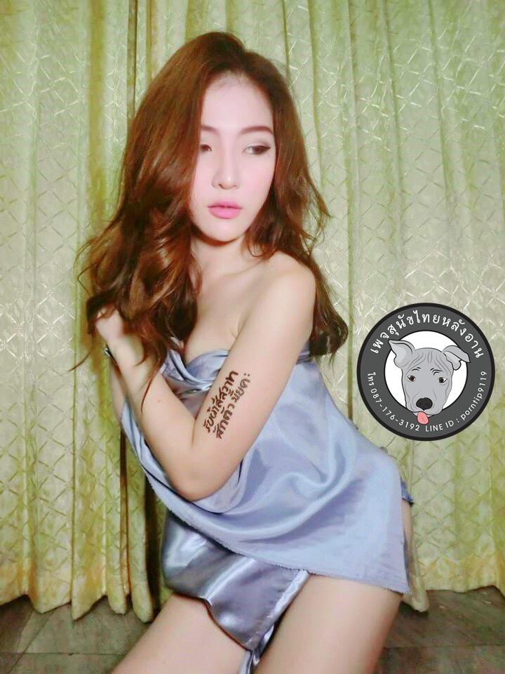 110509ไทยหลังอานหมาไทยซื้อขายหมาไทยนนทบุรีจตุจักร