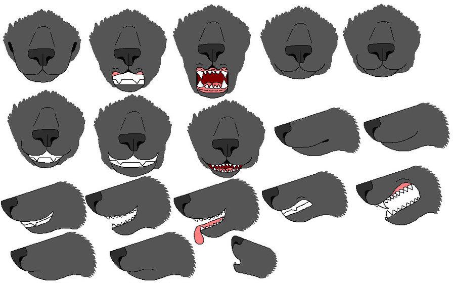 wolf_muzzle_ref_sheet_by_fuzzyfur455-d47c42x