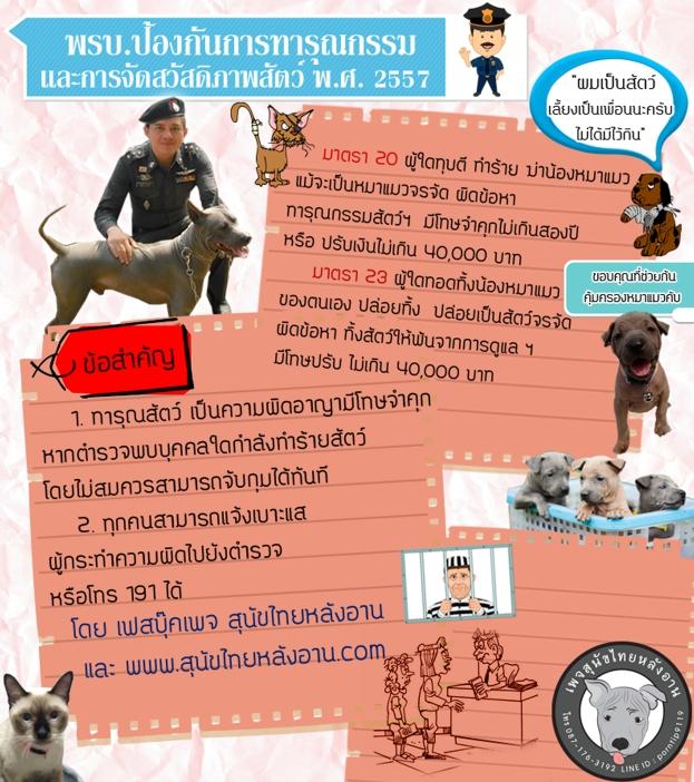 กฎหมาย พรบ คุ้มครองสัตว์ห้ามทำร้ายทุบตีฆ่าหมาแมว
