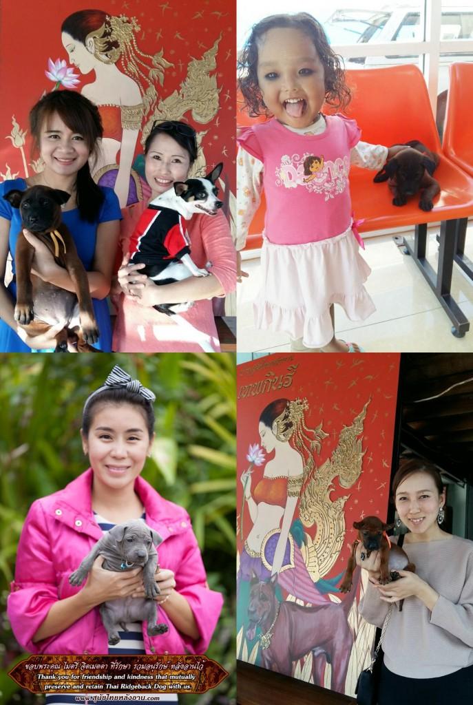 37345ไทยหลังอานเชียงใหม่เชียงรายภูเก็ต-tile